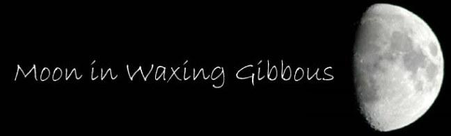 moon-in-waxing-gibbous-big