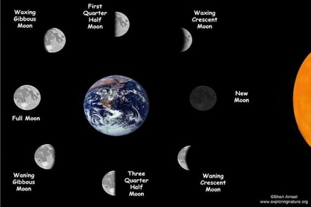 Moon-phases20160110-1408-18lubol